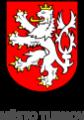 Logo Web Město